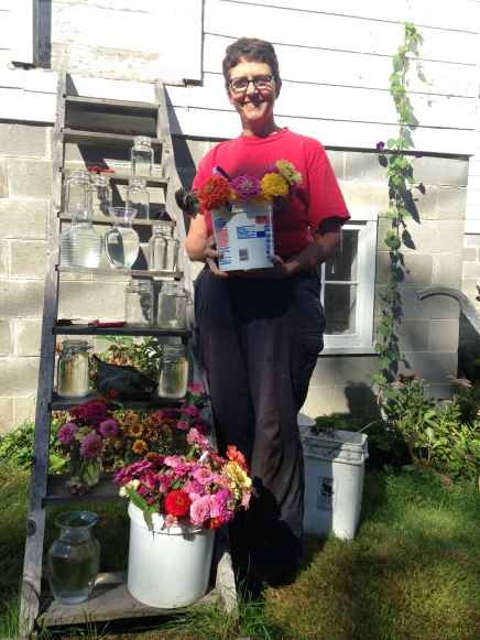 Laurel with zinnias 2015