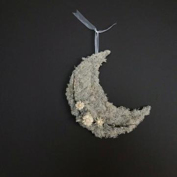 Dried Botanical Moon Hanging