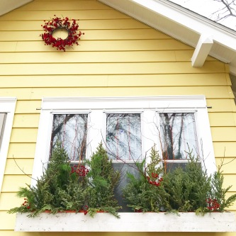 Winter Windowboxes with MN grown botanicals
