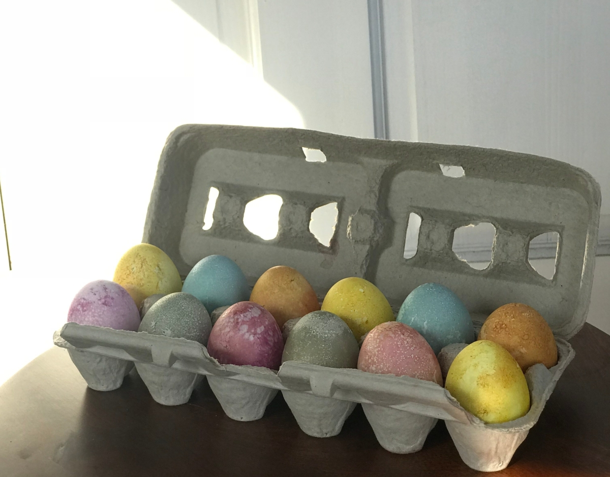 plant dyed eggs in rainbow colors